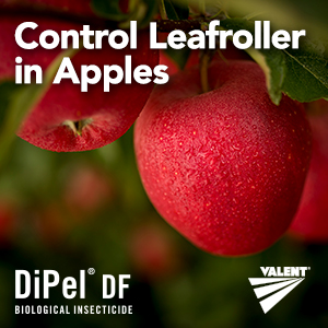 DiPel Fruit Grower Report