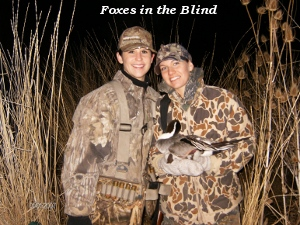 Foxes in the blind