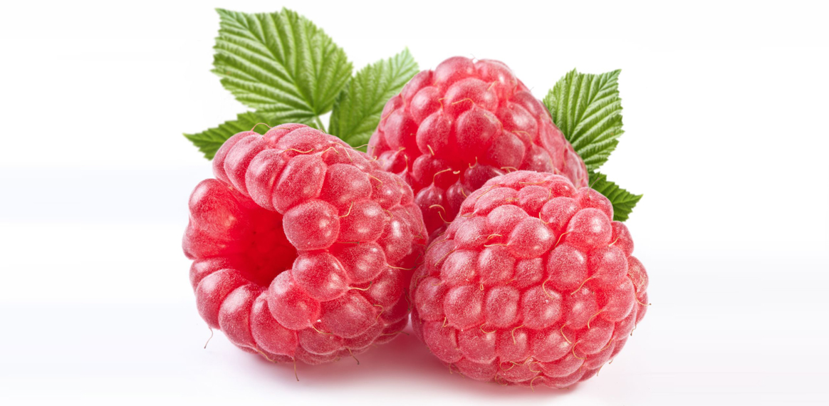 Raspberries-Are-Healthy-Pt-1-and-Fruit-Bites